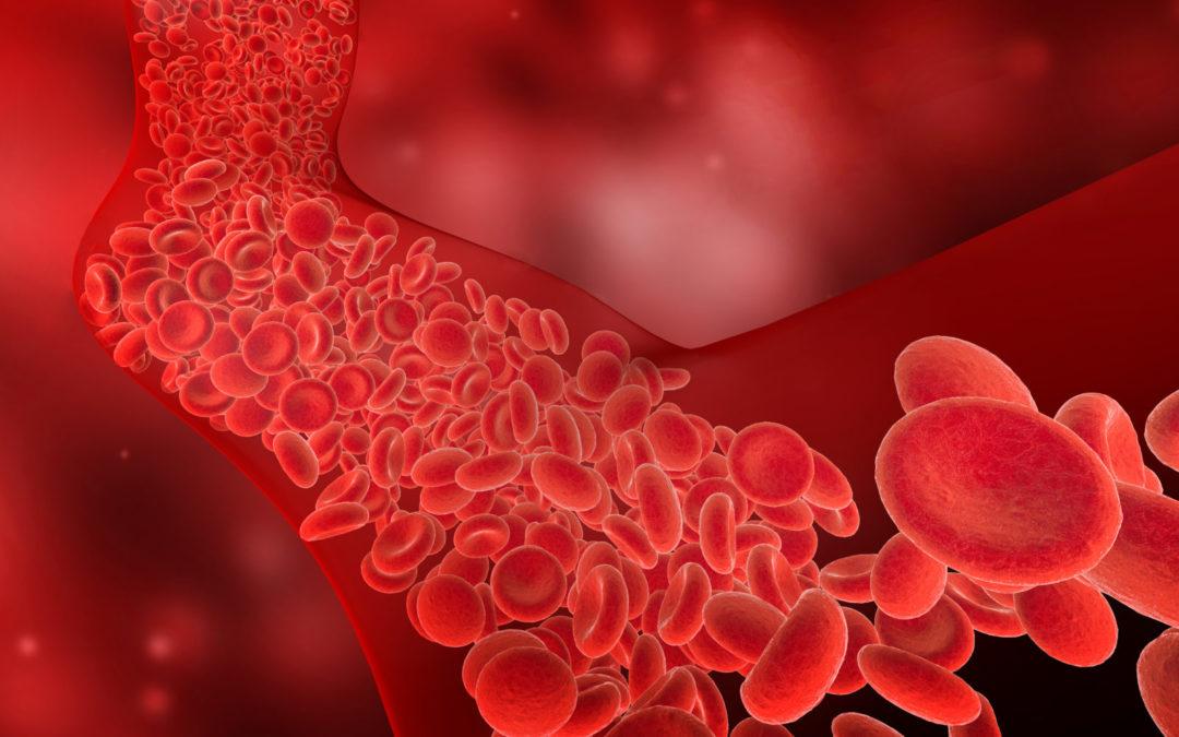 Oxidativer Stress und Zellschutz